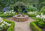 Vashon Island, Washington: Walkway with slate water feature and grape vine arbor also featuring boxwood and blooming hydrangeas in summer. Frogggsong Gardens