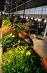 Fresh vegetables and food produce in Fethiye market, Turkey