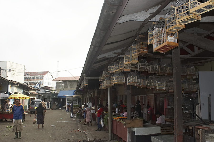 Bird cages for sale in the central market of Paramaribo, Suriname.