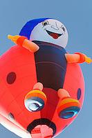 Coccibreizh (?) d'Hervé Harlet, montgolfière deux places<br /> http://www.montgolfiere-bretagne.com/<br /> info@montgolfiere-bretagne.com