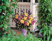 Carl, FLOWERS, nature, photos, SWLA, SWLA886,#F# Blumen, Natur, flores, naturaleza