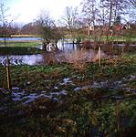 AWY7AA Wet flood plain with standing water Suffolk England