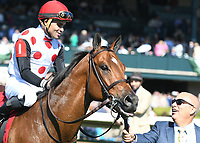 LEXINGTON, KY - APRIL 08: Awesome Slew wins the 31st running of the Commonwealth (Grade 3) $250,000 for owner Live Oak Plantation, trainer Mark Casse and jockey Joel Rosario.  April 08, 2017