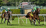 July 13, 2019 :  Sistercharlie #4, ridden by John Velazquez, wins the Diana Stakes during racing at Saratoga Race Course in Saratoga Springs, New York. Alex Zhang/Eclipse Sportswire/CSM