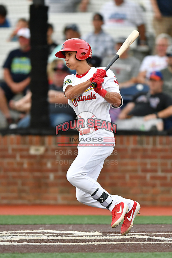 Johnson City Cardinals Ben Baird (33) swings at a pitch during a game against the Kingsport Mets at TVA Credit Union Ballpark on June 28, 2019 in Johnson City, Tennessee. The Cardinals defeated the Mets 7-4. (Tony Farlow/Four Seam Images)