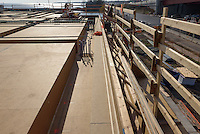 Boathouse at Canal Dock Phase II   State Project #92-570/92-674 Construction Progress Photo Documentation No. 05 on 17 November 2016. Image No. 21