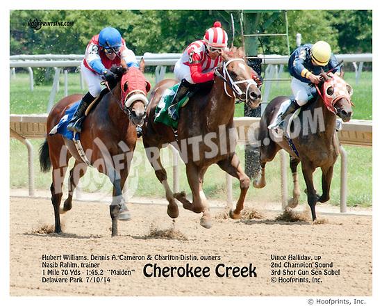 Cherokee Creek winning thru DQ at Delaware Park on 7/10/14