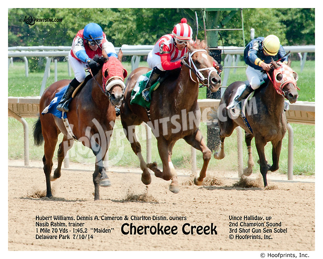 Cherokee Creek winning thru DQ at Delaware Park on 7/10/14