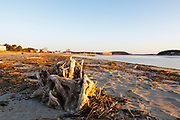 Popham Beach State Park in Phippsburg, Maine USA at sunrise during the spring months. Popham Beach State Park is located near Fort Popham.