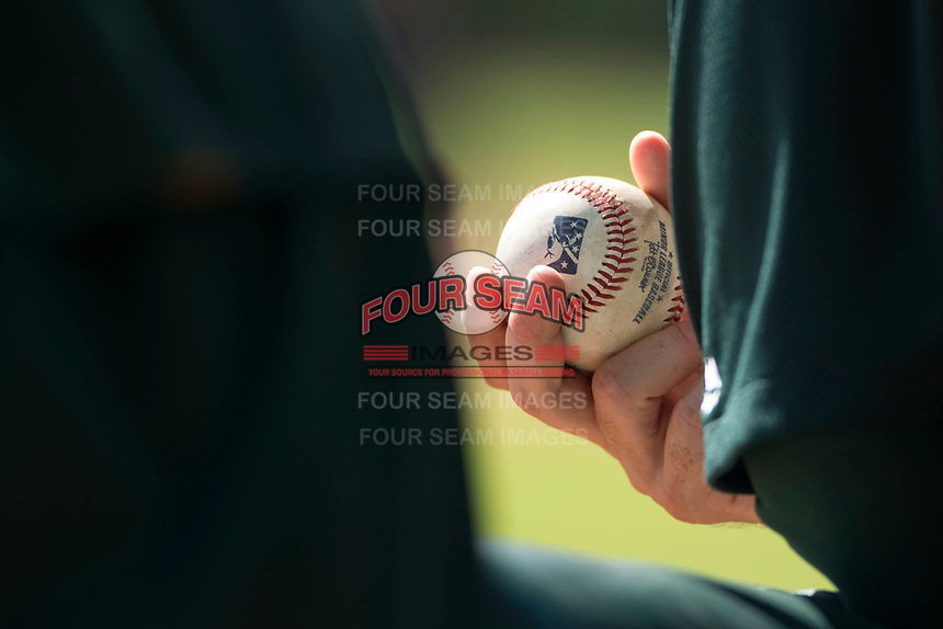 A coach holds a Minor League baseball during an Instructional League game between the Oakland Athletics and Los Angeles Dodgers at Camelback Ranch on October 4, 2018 in Glendale, Arizona. (Zachary Lucy/Four Seam Images)