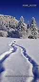 Marek, CHRISTMAS LANDSCAPES, WEIHNACHTEN WINTERLANDSCHAFTEN, NAVIDAD PAISAJES DE INVIERNO, photos+++++,PLMPST258,#xl#
