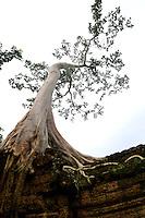 CAMBODIA 2007, BANTEY THOM TEMPLE