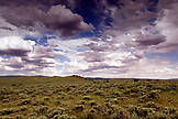 USA, Wyoming, Encampment, open landscape covered in sagebrush, Big Creek Ranch