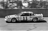 BROOKLYN, MI - AUGUST 11: Darrell Waltrip drives his Junior Johnson Chevrolet en route to a second place finish in the Champion Spark Plug 400 NASCAR Winston Cup race at the Michigan International Speedway near Brooklyn, Michigan, on August 11, 1985.