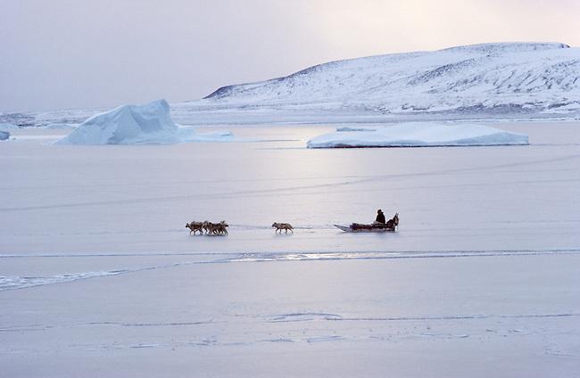 Inuit hunter travels by dogsled on thin sea ice..Savissivik, N.W. Greenland