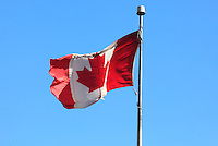 """September 19, 2012 - Montreal (Qc) CANADA - The National Flag of Canada, also known as the Maple Leaf, and l'Unifolie (French for """"the one-leafed"""")"""
