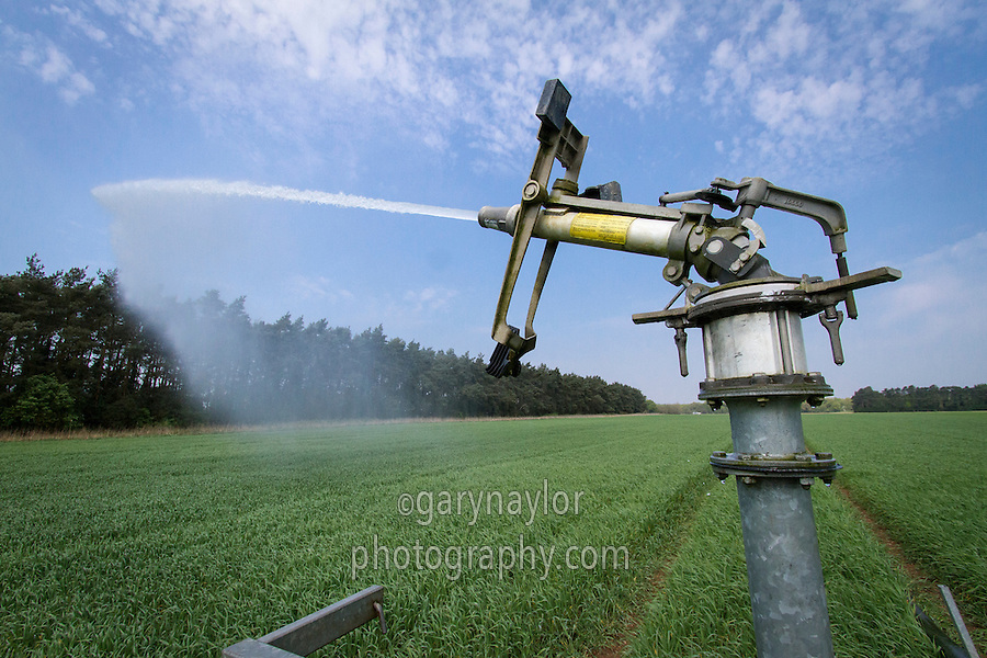 Irrigating spring barley wih a rain gun - April, Norfolk