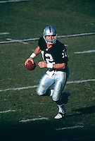 OAKLAND, CA - Quarterback Rich Gannon of the Oakland Raiders in action during a game against the Baltimore Ravens at the Oakland Coliseum in Oakland, California in 2001.  Photo by Brad Mangin