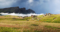 Lesotho Drakensberg Landscape.