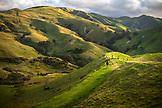 NEW ZEALAND, Coromandel Peninsula, Woman Walking on the Muriwai Walk,  Ben M Thomas