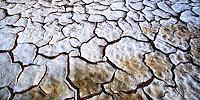 Footprints in the Namib Desert, Namibia, 2000