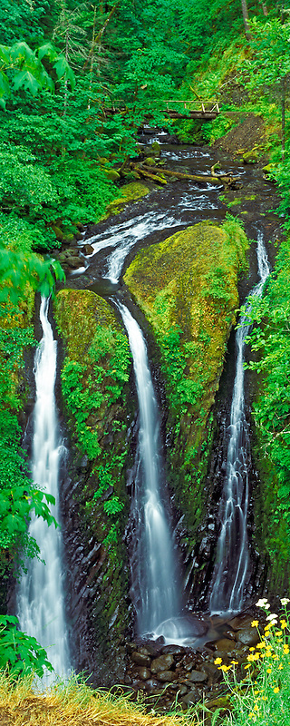 Triple Falls in spring with wildflowers. Columbia River Gorge National Scenic Area, Oregon