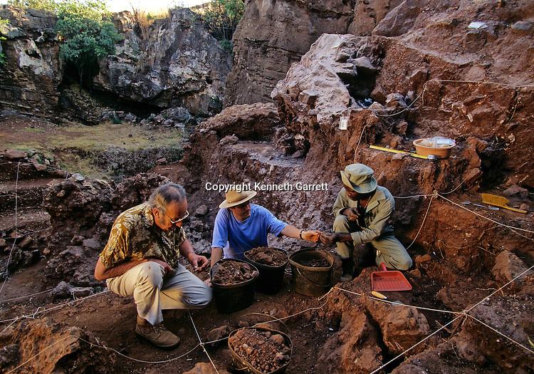 Drimolean Site, near Johannesburg, South Africa, 2 million year old hominid
