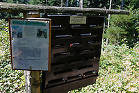 Germany, Baden-Wuerttemberg, Markgraefler Land, attractant trap for bark beetles