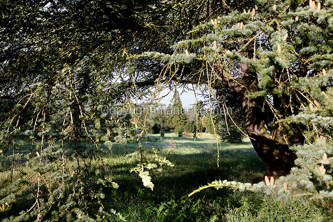 Arboretum de Chevreloup, 195 hectares, major arboretum located north of the Palace of Versailles, Rocquencourt, Yvelines, France. The site forms part of the Museum national d'Histoire naturelle and dates back to 1699. It contains about 15'000 specimens. The arboretum is organized in 3 major sections : systematic botany, the oldest plantations covering some 50 hectares ; geography, divided in 3 areas  (Europe, Asia and America, covering some 120 hectares and ornamental horticulture covering some 25 hectares. Picture by Manuel Cohen