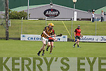 Senior Hurling Championship Round 2 Abbeydorney 0-14  -v-  0-11 Ballyheigue at Austin Stack Park on Sunday