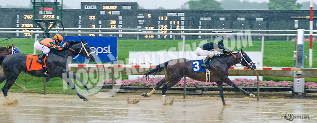 Crea's Bklyn Law winning at Delaware Park on 7/6/17