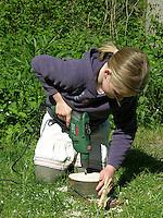 Kind, Kinder bauen Insekten-Hotel, Insektenhotel, Nisthilfe für Hymenopteren, Baumscheibe mit Bohrlöchern bietet Nistmöglichkeiten für solitäre Wildbienen und Wespen, Mädchen bohrt Löcher mit Bohrmaschine