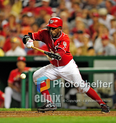 28 August 2010: Washington Nationals outfielder Nyjer Morgan lays down a bunt against the St. Louis Cardinals at Nationals Park in Washington, DC. The Nationals defeated the Cards 14-5 to take the third game of their 4-game series. Mandatory Credit: Ed Wolfstein Photo