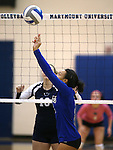 Marymount's Zacharie Jackson sets during a college volleyball match against  PSU Harrisburg at Marymount University in Arlington, Vir., on Wednesday, Oct. 9, 2013.<br /> Photo by Cathleen Allison