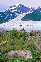 Chugach mountains, Cascade glacier, Barry glacier, Barry Arm, Prince William Sound, Alaska