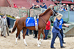 HOT SPRINGS, AR - APRIL 14: Oaklawn Handicap. Oaklawn Park on April 14, 2018 in Hot Springs,Arkansas. #7 Hedge Fund (Photo by Ted McClenning/Eclipse Sportswire/Getty Images)
