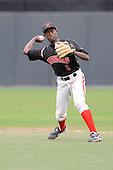 baseball-1-Gerard Taylor 2010