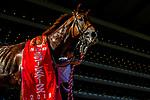 06-16-19 Unicorn Stakes Tokyo Japan