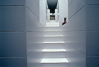 Resembling the entrance to a temple a pristine white staircase is bathed in unearthly and mysterious light