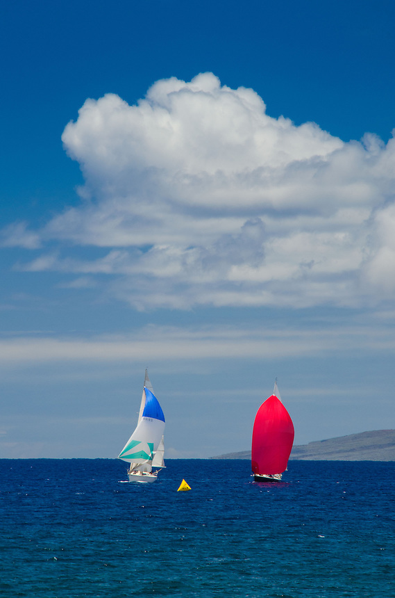 Spinnakers Up in Sailboat Race in Maui Channel, Maui, Hawaii, US