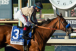 02-16-19 Santa Monica Stakes
