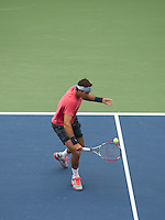 Del Potro Backhand Dropshot US Open 2013