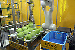 June 8, 2016, Tokyo, Japan - Japanese robot maker Fanuc displays a robot which can sort cabbages by weight at the International Food Machinery and Technology Exhibition in Tokyo on Wednesday, June 8, 2016. 688 Japanese and foreign food machinery companies are exhibiting their latest technology and products in the four-day trade show.   (Photo by Yoshio Tsunoda/AFLO) LWX -ytd-