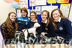 Eimear Ellard, Blathnaid Cotter, Chloe Morris, Niamh Walsh and Niamh O'Shea, students attending Presentation Secondary School Tralee, pictured with their project the Caca Collectors at IT Tralee Student Enterprise awards on Friday last.