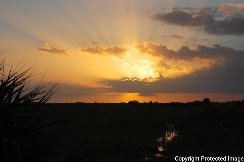Dazzling rays of sunset photographed at Arthur Marshall Loxahatchee preserve, Boynton Beach, Florida