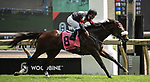 Toronto, Ontario. #8, Delta Prince, wins the Grade II King Edward Stakes for Adena Springs and Stronach Stables. Javier Castellano in the irons for Trainer Jimmy Jerkens at the 159th Queen's Plate Festival at Woodbine Racetrack in Toronto, Ontario, Canada on June 30th, 2018. (Photo by Carson Dennis/Eclipse Sportswire/Getty Images)