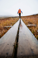 Female hiker walks along wooden planks in Tjäktjavagge on Kungsleden trail, Lappland, Sweden