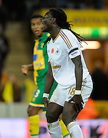 Bafetimbi Gomis of Swansea City reacts after failing to score during the Barclays Premier League match between Norwich City and Swansea City played at Carrow Road, Norwich on November 7th 2015