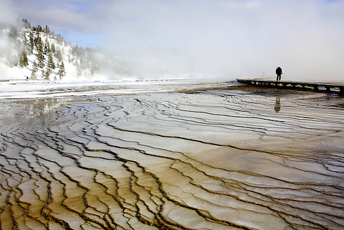 Run off from the hot spring, Grand Prismatic Spring, forms travertine terraces from the minerals in the water during winter at Yellowstone National Park,Wyoming