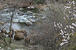 Alameda Creek, Fremont
